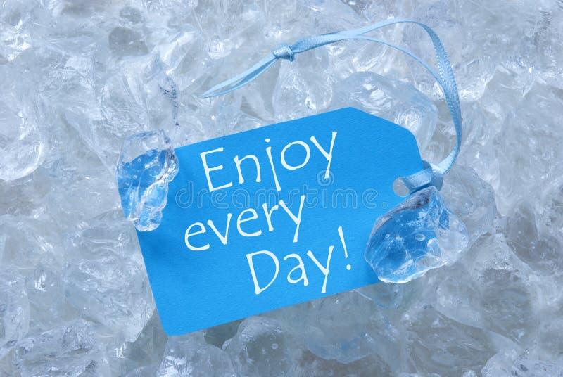 Aufkleber auf Eis mit genießen jeden Tag lizenzfreie stockfotos