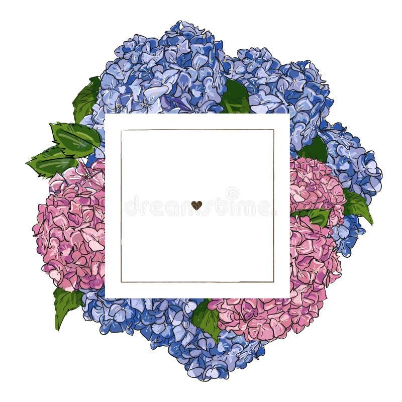 Aufkleberdesignschablone Vektorhandgezogenes Illustrations-Entwurfsrosa und blaue Hortensie auf quadratischem Rahmen auf weißem H stock abbildung