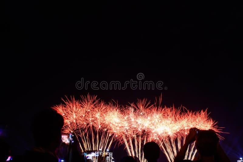 Aufpassende Feuerwerke der Menge und feiern Stadt gegründet lizenzfreie stockfotografie