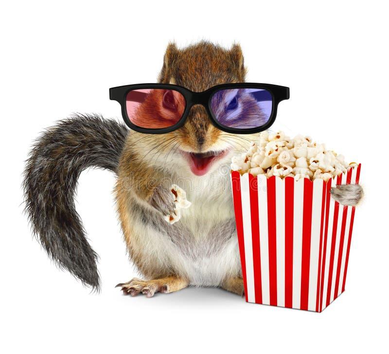 Aufpassender Film des lustigen Tierstreifenhörnchens mit Popcorn stockbild