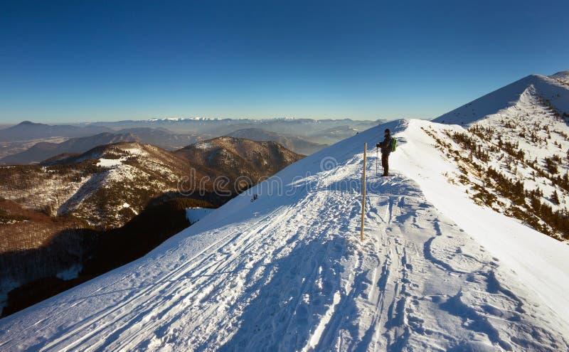 Aufpassender Tourist in der slowakischen Winterlandschaft stockbild