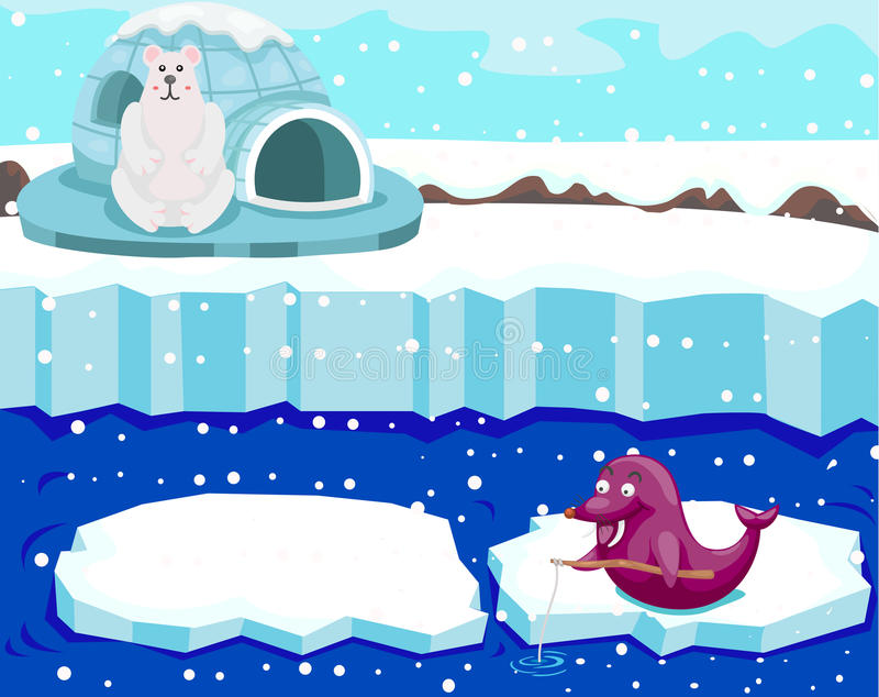 Aufpassendes Dichtungsfischen des netten Eisbären stock abbildung