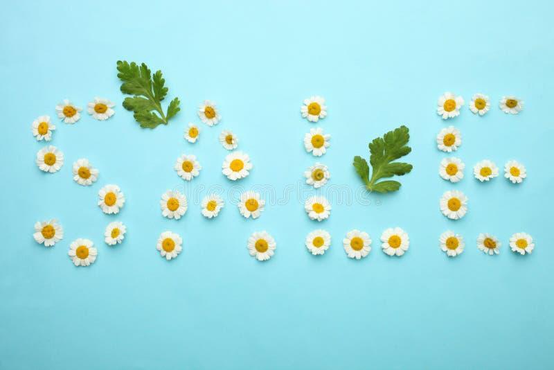 Aufschrift 'Verkauf 'von kleinen Blumen von Chrysanthemen stockfotografie