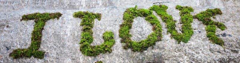 Aufschrift mit Moos auf dem Stein stockbild