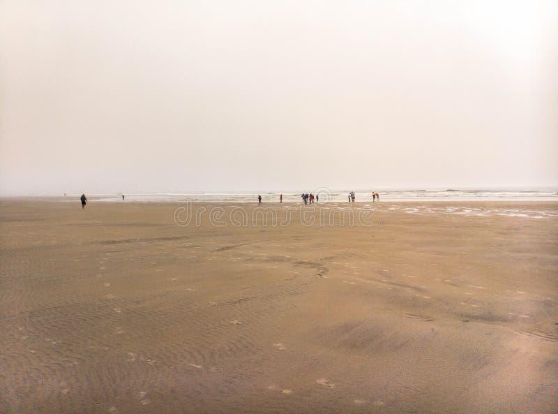 Aufwecken auf Ogunquit-Strand in den Nebel stockfotografie