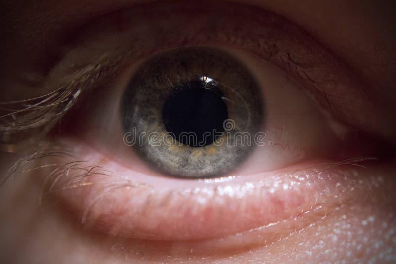 Auge: Blau/Grün lizenzfreie stockbilder