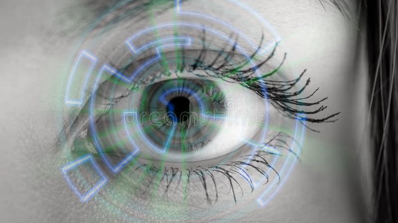 Auge, das numerische Information ansieht lizenzfreie stockfotos