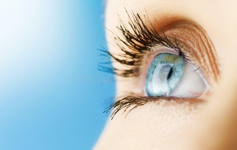 Auge der Frau stockbild