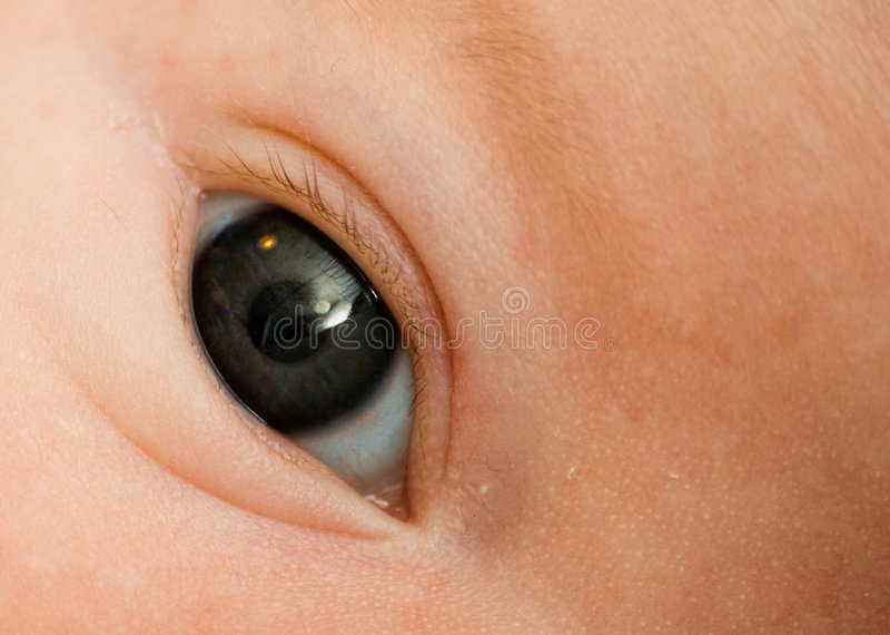 Auge des Schätzchens lizenzfreies stockbild