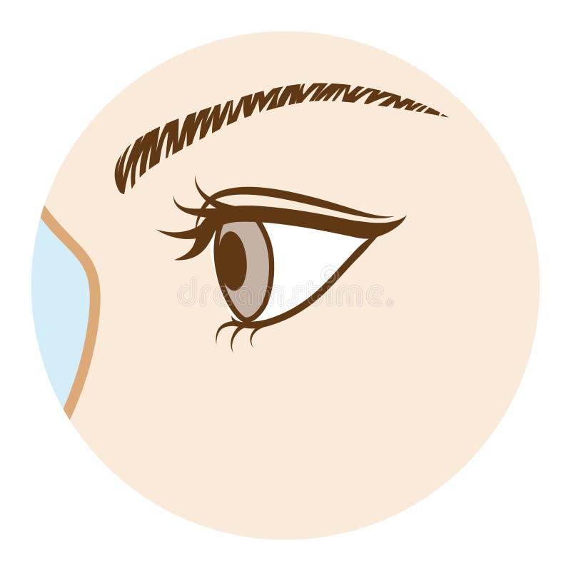 Auge - Körperteil, Seitenansicht vektor abbildung