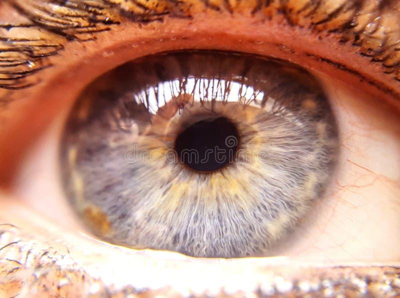 Auge so nah lizenzfreie stockfotos