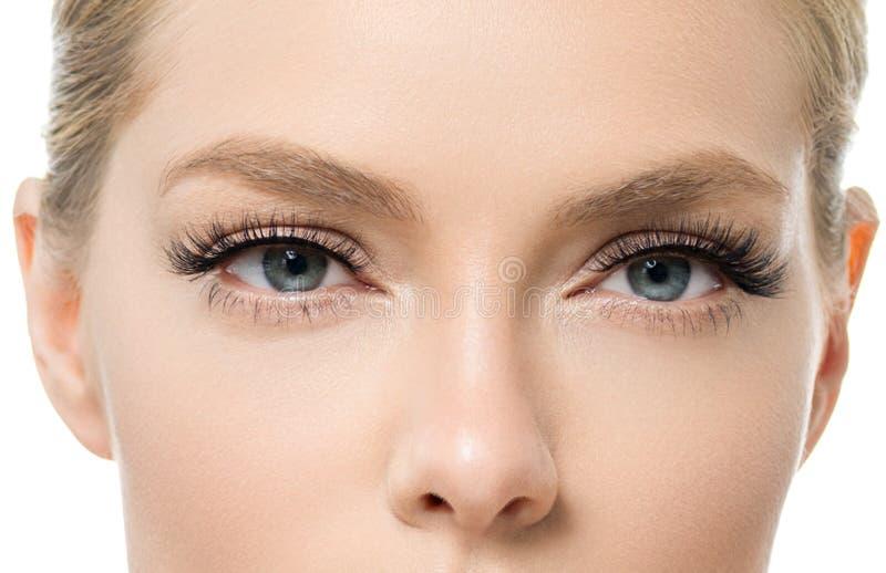 Auge peitscht Frauenschönheits-Gesichtsmakro stockfotografie