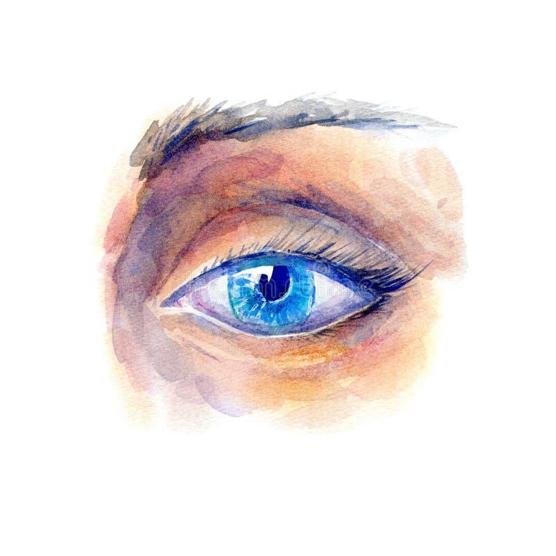 Auge und Augenbraue Mode, Kosmetik und Sch?nheitsbild vektor abbildung
