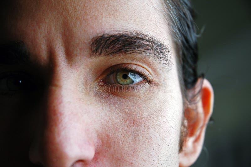 Download Augen stockfoto. Bild von grün, geschäftsmann, gesicht, männer - 32358