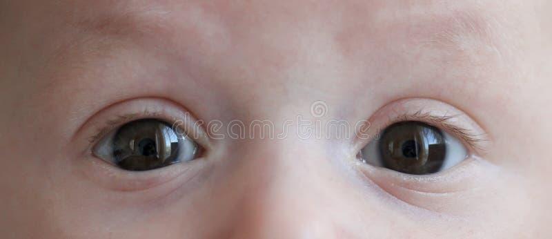Augen des Kindes lizenzfreies stockbild