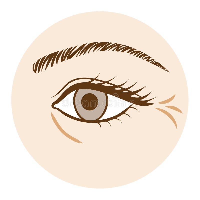 Augen-Falte - Körperteil, Vorderansicht Vektor Abbildung ...
