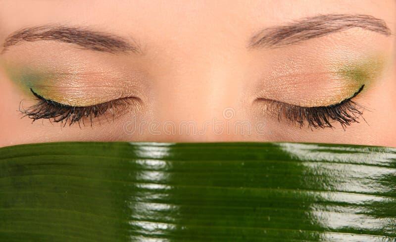 Augen und grünes Blatt lizenzfreie stockfotos