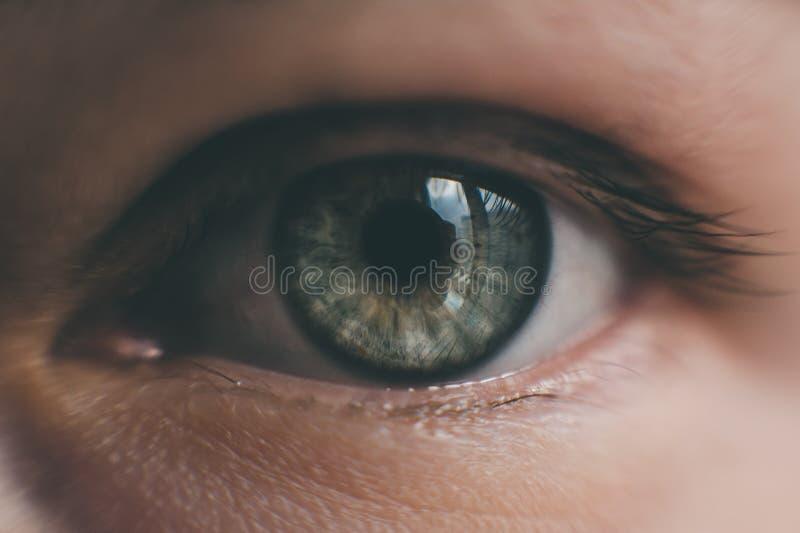 Augenmädchennahaufnahme stockfotos
