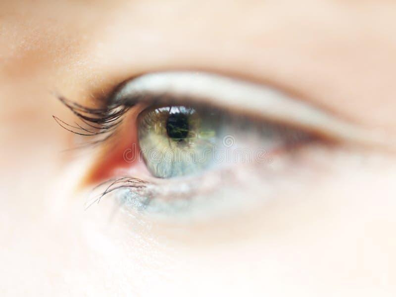 Augenmakro stockfotos