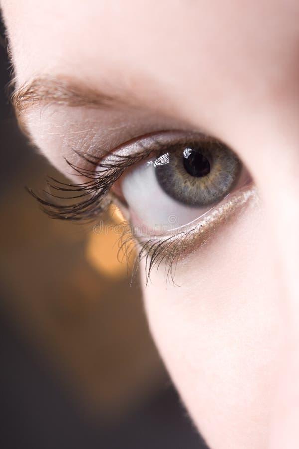 Augennahaufnahme stockfotos