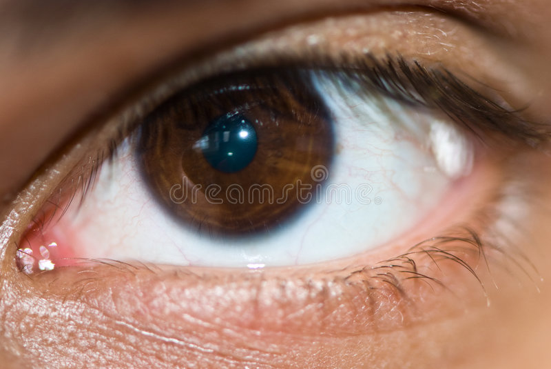 Augennahaufnahme lizenzfreie stockfotografie