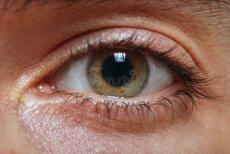 Augennahaufnahme eines Mannes stockbild