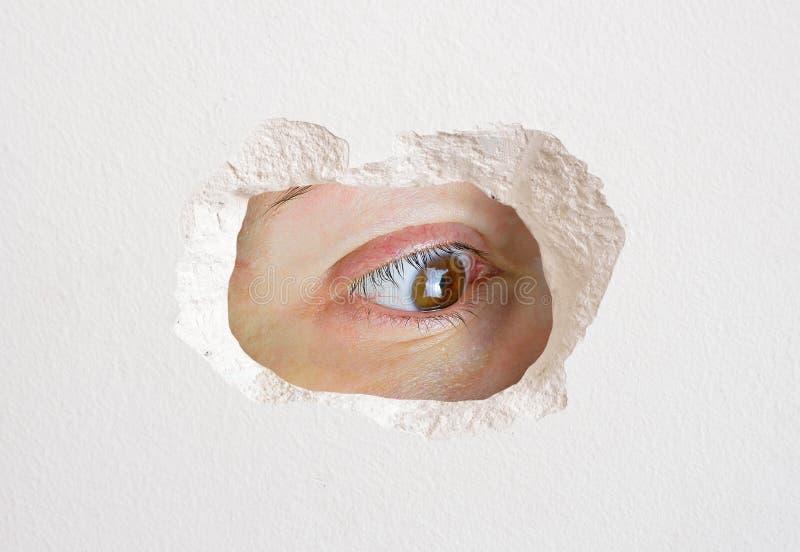 Augenschauen stockbilder