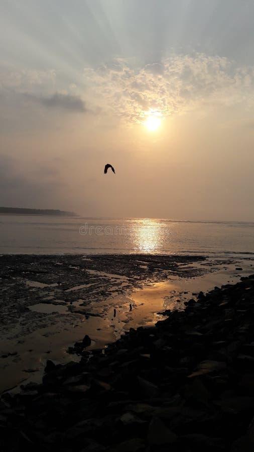 Augmentation de Sun photo libre de droits
