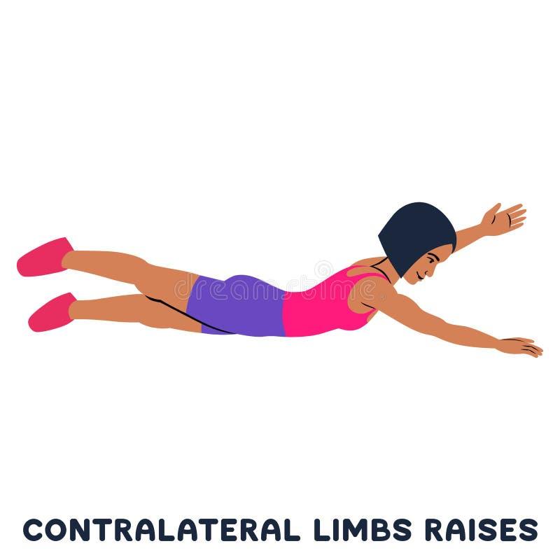 Augmenter contralatéraux de membres Exersice de sport Silhouettes de femme faisant l'exercice Séance d'entraînement, s'exerçant illustration stock