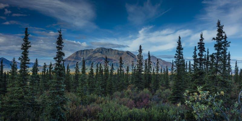 26. August 2016 - Landschaftsansichten der zentralen alaskischen Strecke - verlegen Sie 8, Denali-Landstraße, Alaska, die Angebot stockfoto