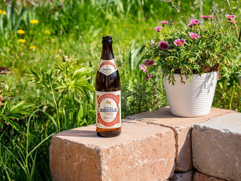 Augusta, Germania - 3 maggio 2019: Una bottiglia della birra di Riegele su una parete di pietra con i fiori e i gras nei preceden immagine stock libera da diritti