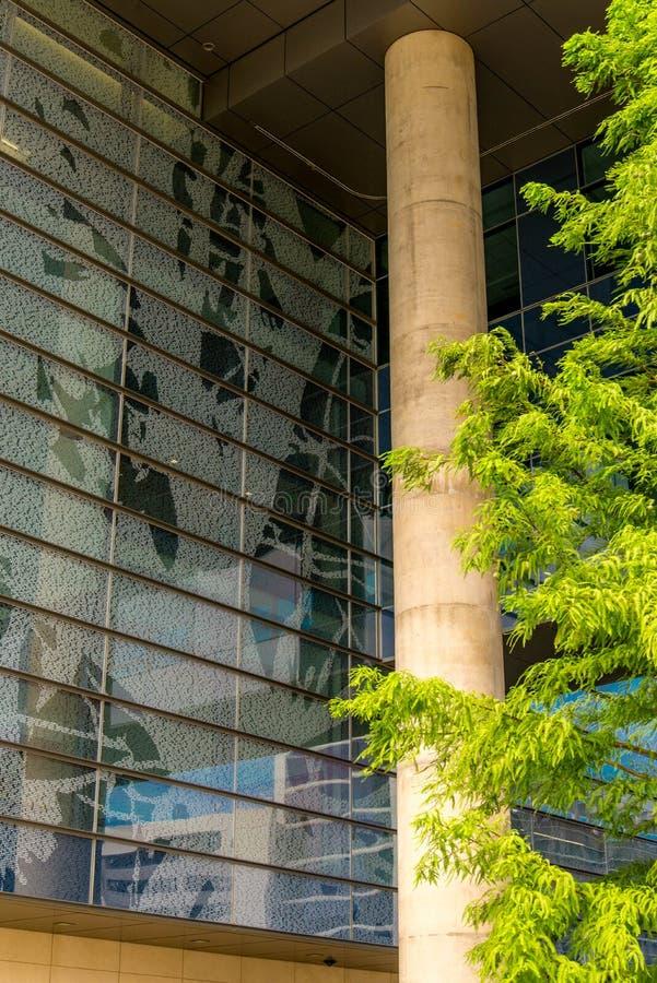 Augusti 19, 2015 - Dallas, Texas, USA Det nya tillägget till Parkl royaltyfri foto