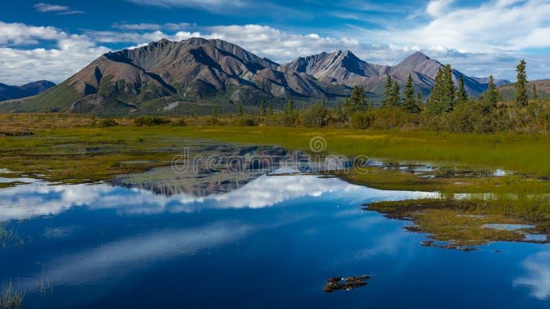 AUGUSTI 26, 2016 - sjöar av centralt alaskabo område - sänder 8, den Denali huvudvägen, Alaska, erbjudanden för en grusväg som be royaltyfri bild