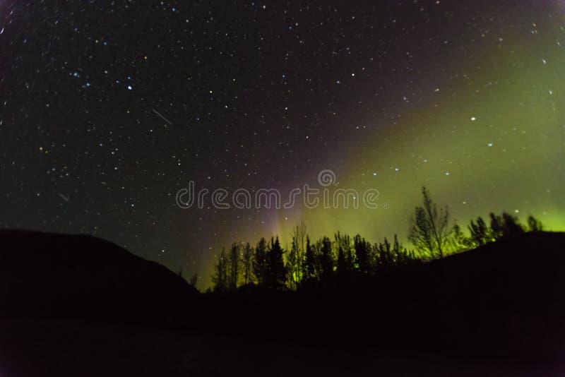 30 AUGUSTUS, 2016 - Aurora Borealis of de Noordelijke Lichten verlichten de nachthemel van Kantishna, Alaska - Mnt Denali Nationa royalty-vrije stock foto's