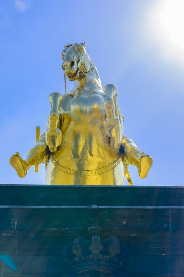 Download Augustus II La Estatua Fuerte En Dresden Fotografía editorial - Imagen de frente, ciudad: 64200757