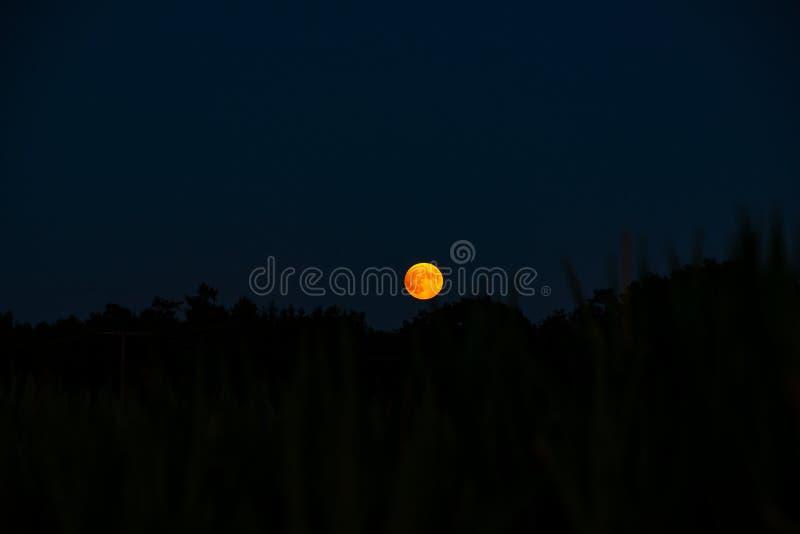 Aumentação da lua dos plenos verões imagens de stock royalty free