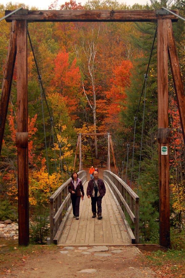 Aumento del fogliame di caduta in Nuova Inghilterra fotografia stock libera da diritti