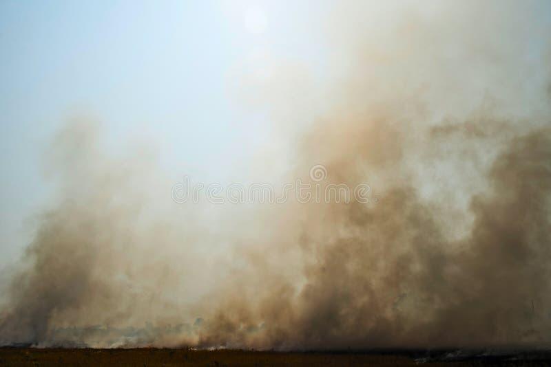 Aumento del fumo denso da un fuoco immagini stock