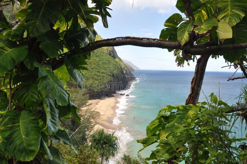 Aumento della spiaggia di HanakapiaÂ'i, Kauai, Hawai fotografia stock libera da diritti