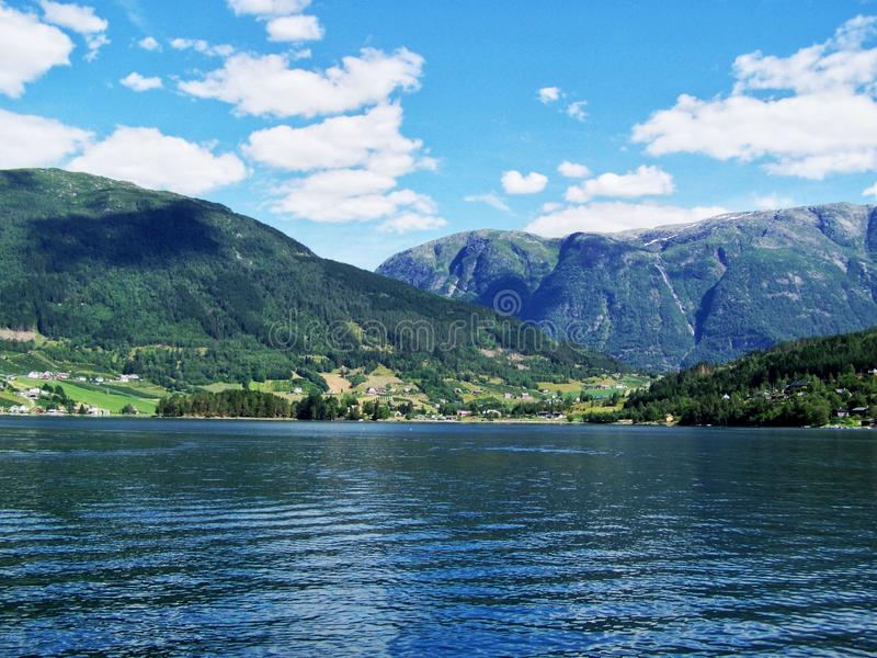 Aumento di natura nel legno, l'acqua del fiordo, fondo di giorno soleggiato fotografie stock
