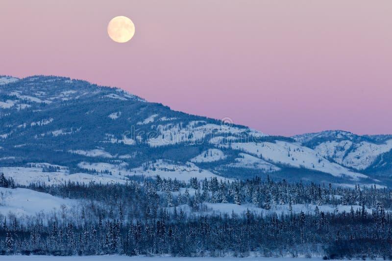 Aumento di paesaggio e della luna piena di inverno del Yukon Canada immagini stock libere da diritti