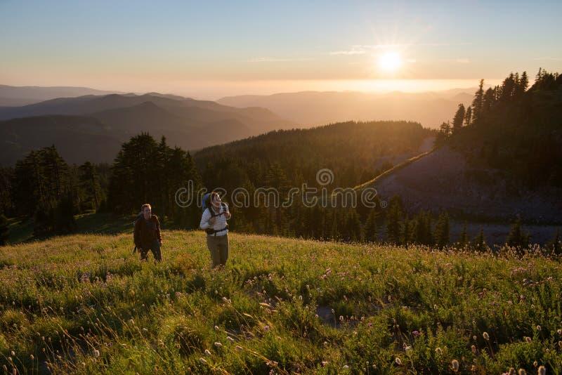 Aumento di tramonto attraverso i prati alpini immagini stock