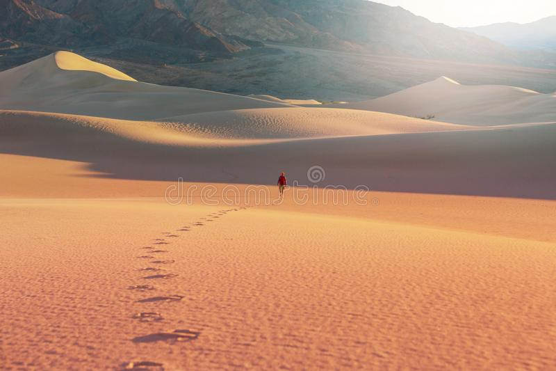 Aumento nel deserto fotografia stock libera da diritti