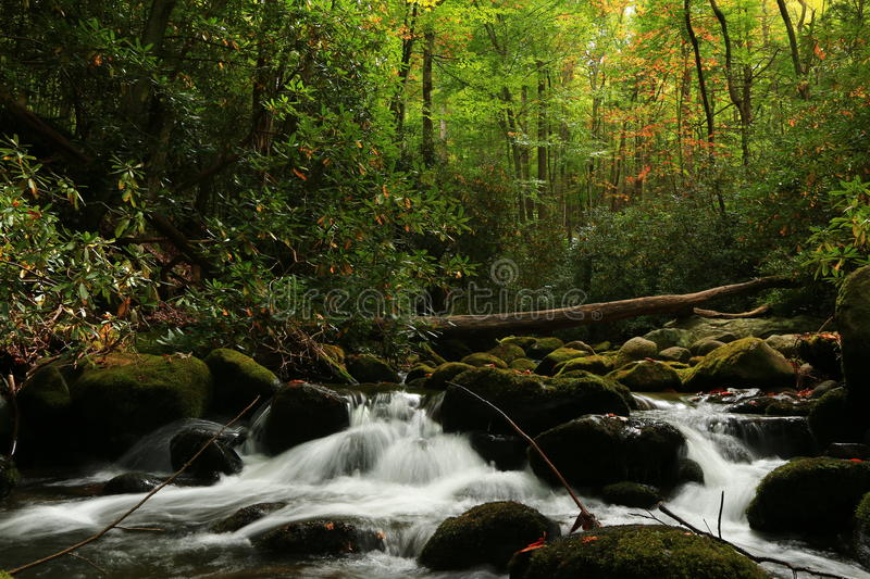 Autumn, Roaring Fork and the Great Smoky Mountain National Park. The Great Smoky Mountain National Park Roaring Fork Motor Nature Trail is Gatlinburg Tennessee stock photos