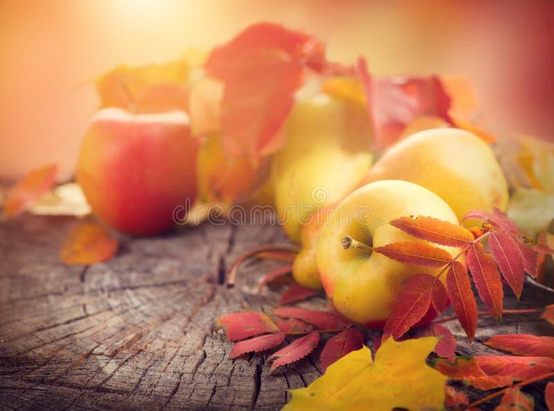 aunumn背景留给在寂静的感恩的生活木 秋天五颜六色的叶子、苹果和梨 免版税库存图片