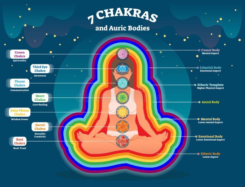 Aurakörperschichten, geistiges Energieträgerillustrationsdiagramm mit sieben chakras Energiebilanzsystem Yogapraxis und Heilen lizenzfreie abbildung