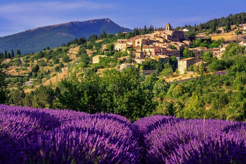 Aurel镇和淡紫色领域在普罗旺斯,法国 免版税库存图片