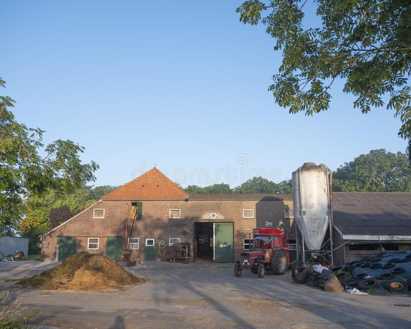 Farm yard of dairy farm in north german east frisia on sunny summer morning stock images