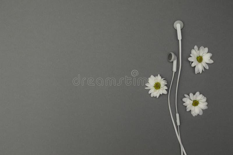 Auricular con las flores en un fondo gris fotos de archivo libres de regalías