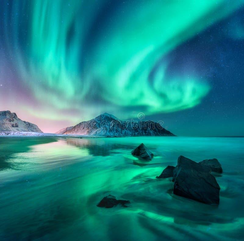 auricular Nordliga ljus i Lofoten öar, Norge arkivfoton